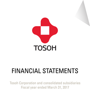 Management's discussion and analysis and audited financial statements